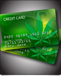 how to get a medical weed card