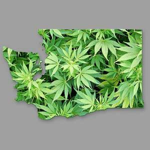 washington-state-marijuana