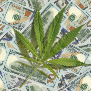 Cannabis leaf scattered on the dollars. Seamless image