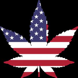 Marijuana POB